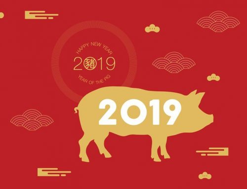 Year of the Pig! 🐷